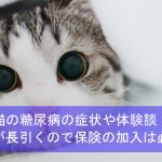 猫の糖尿病の症状や体験談!治療が長引くのでペット保険の加入は必須!